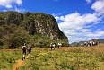Our walks alloow us to explore the unique habitats of Viñales (photo by Josh Vandermeulen)