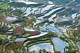 Rice terraces of Yuanyang