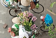 Flower vendors on their bikes